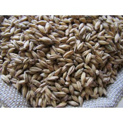 Malt grains Munich 15- 6RH...